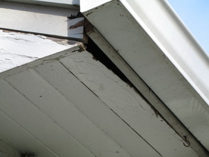 Dmr Gutters Lenio Copper Gutter And More