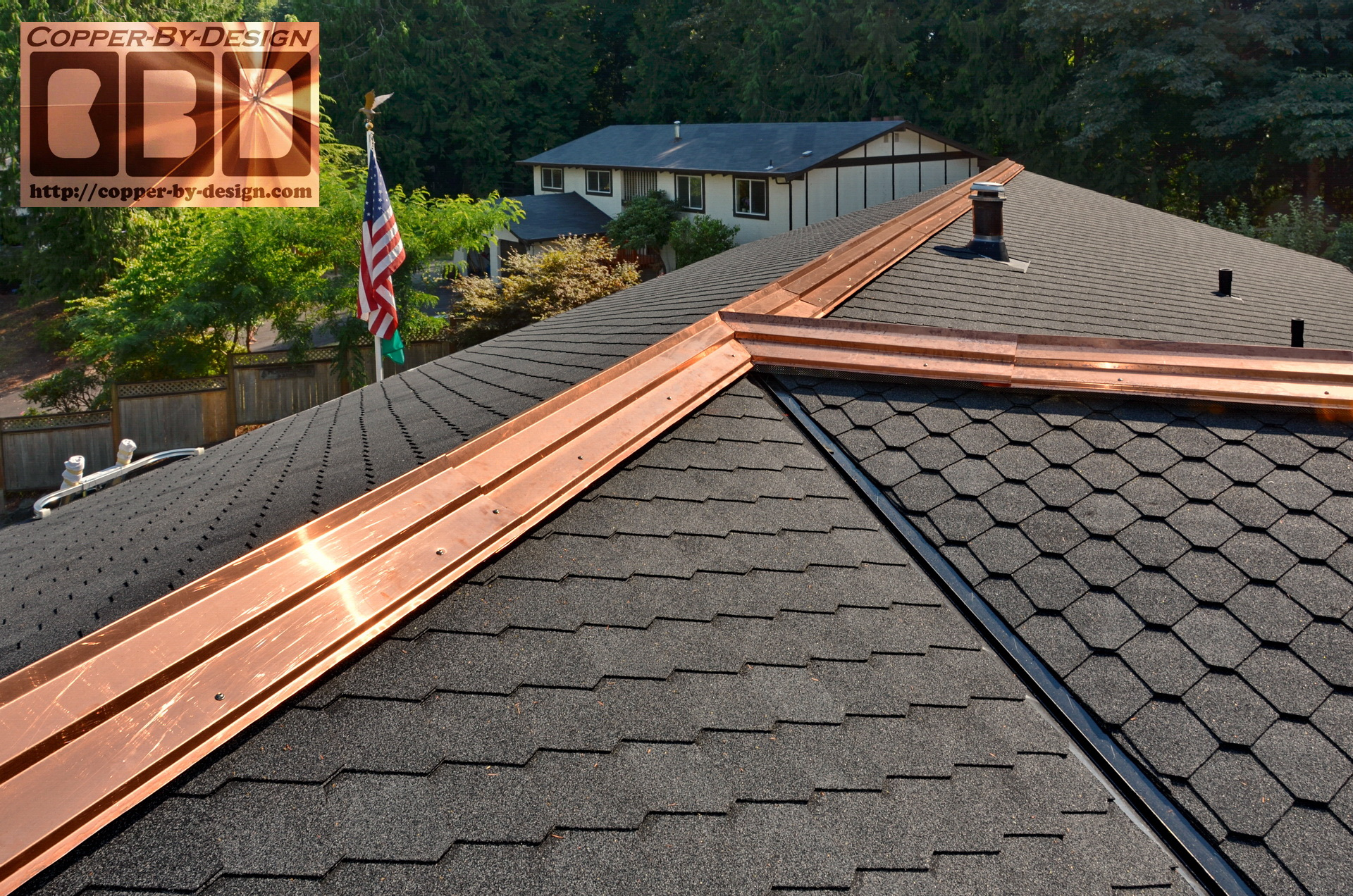 Copper Strips For Roof Moss Control 12 300 About Roof